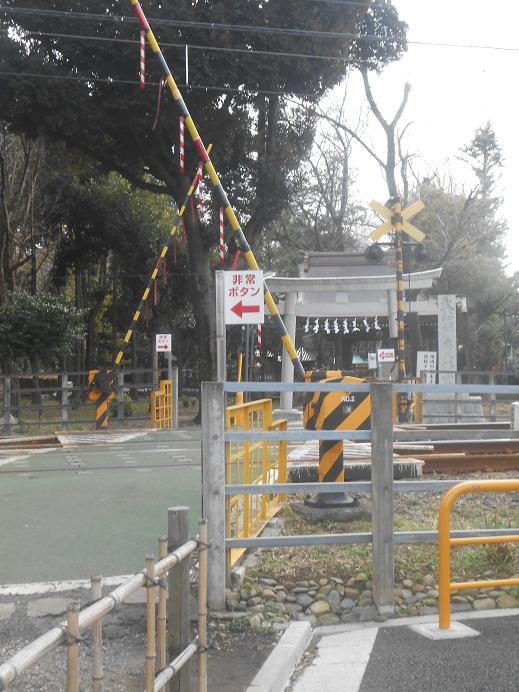 踏切の先の神社.jpg