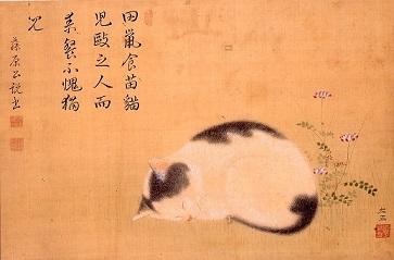 猫展1.jpg