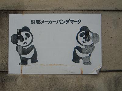 panda-n.JPG